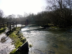 A Bridge Over The River Itchen