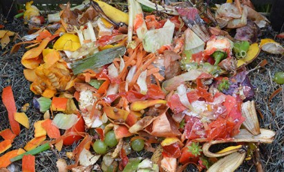Could you be a community waste reduction champion?