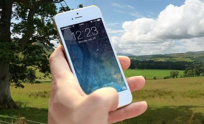 Bogus Rural Telephone Calls