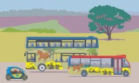 Visit attractions and areas in the New Forest by Bus over the Summer