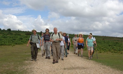 Have fun and learn more about the New Forest in National Volunteer Week