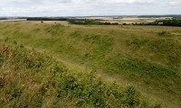 Waterside Natural History Society visit to Badbury Rings