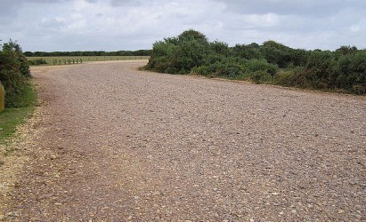 New Forest car parks resurfacing works planned
