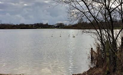 Waterside Natural History Society visit Testwood Lakes