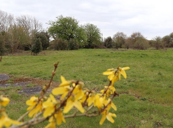 Calshot Cemetery proposed site