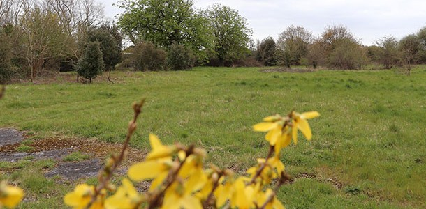 Residents invited to learn more about proposed cemetery in Calshot