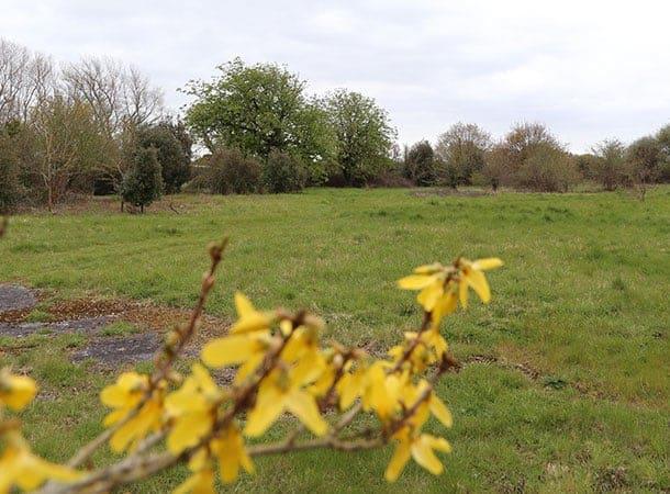 Calshot Cemetery proposed site