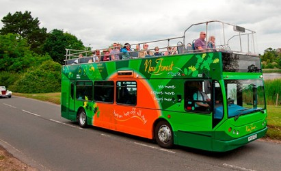 Plan your adventure on the New Forest Tour this summer