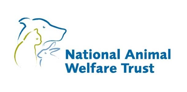 On the road with your dog – National Animal Welfare Trust Travel Survey