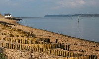 Top marks for New Forest beaches