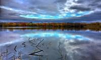 Waterside Natural History Society visit to Blashford Lakes