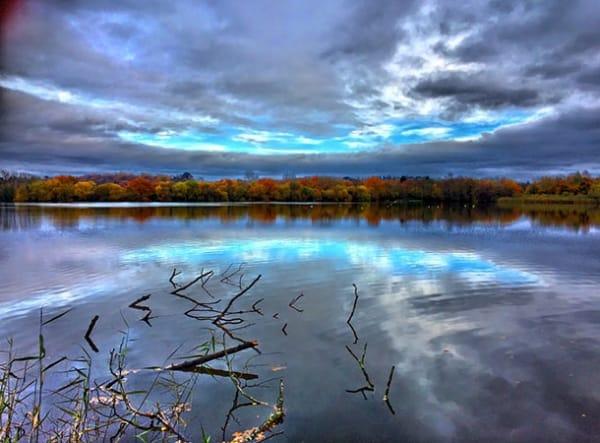 Natural History Society's walk at Blashford Lakes in Autumn