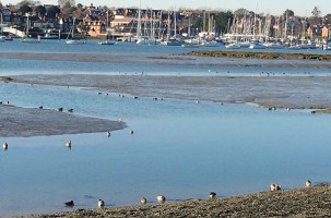 Waterside Natural History Society visit Warsash