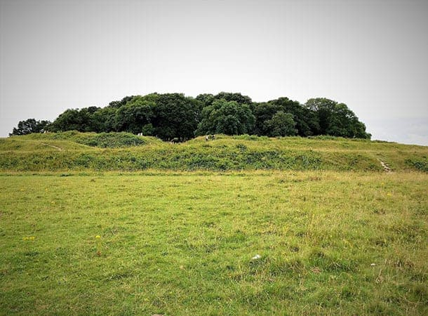 Waterside Natural History Society visit Badbury Rings